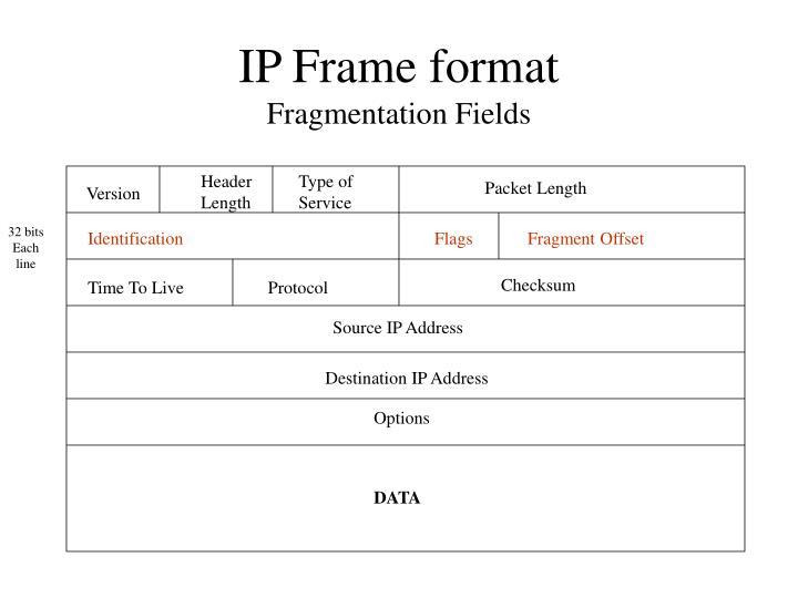 IP Frame format