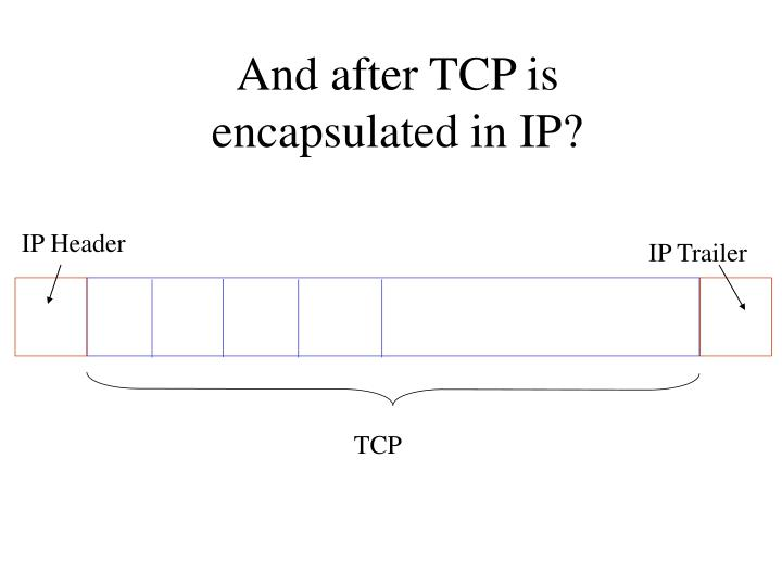 And after TCP is encapsulated in IP?