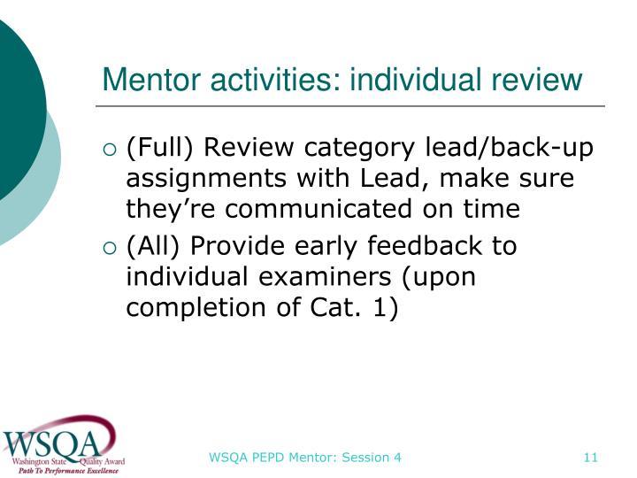 Mentor activities: individual review