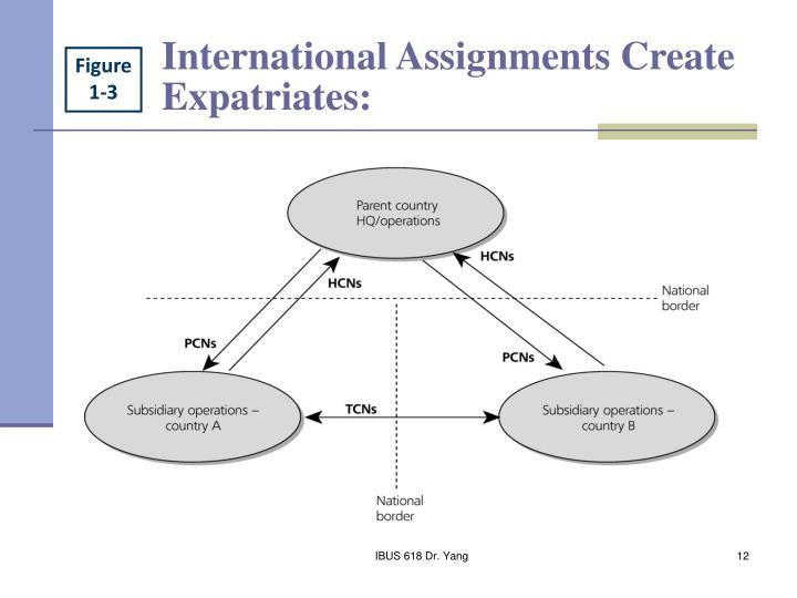 International Assignments Create Expatriates: