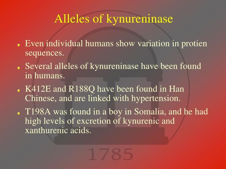 Alleles of kynureninase