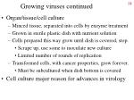 growing viruses continued