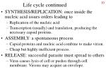 life cycle continued