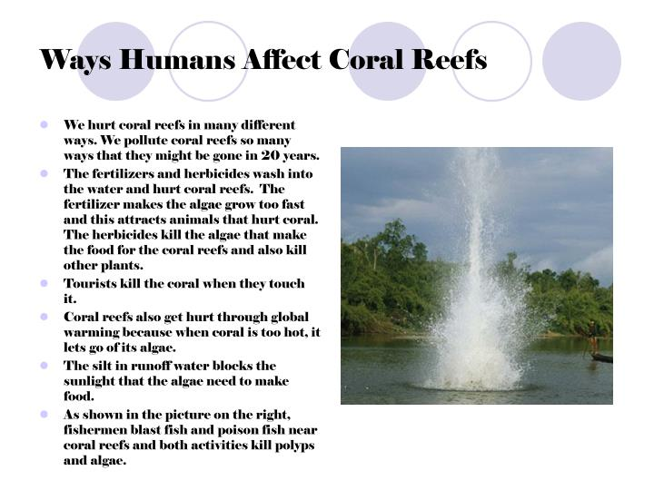 Ways Humans Affect Coral Reefs