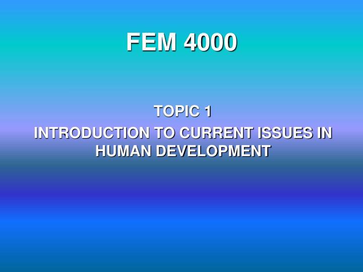 FEM 4000