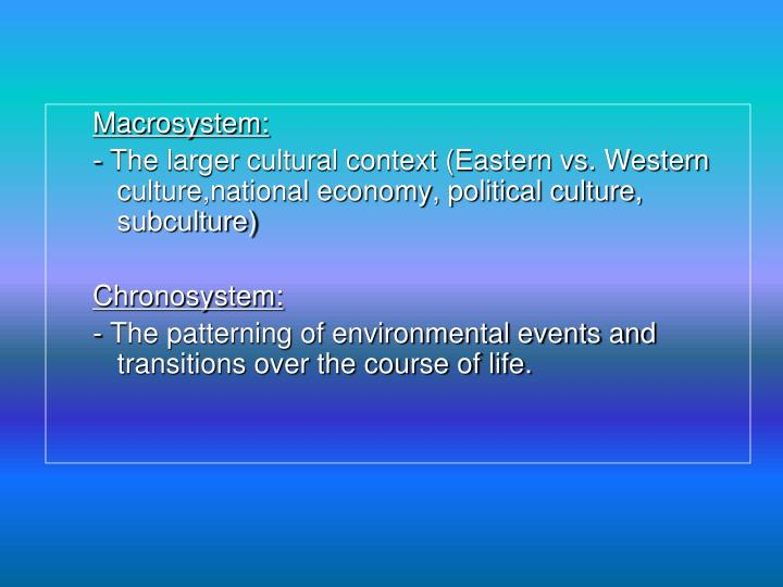 Macrosystem:
