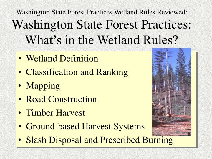 Washington State Forest Practices Wetland Rules Reviewed: