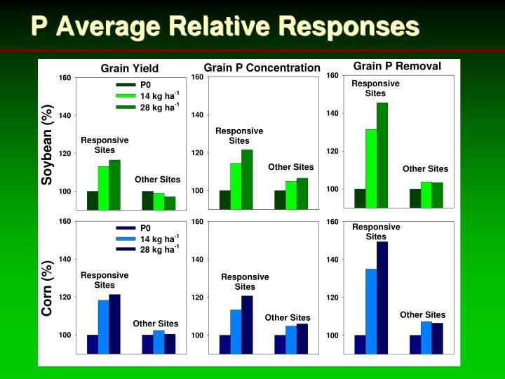 P Average Relative Responses