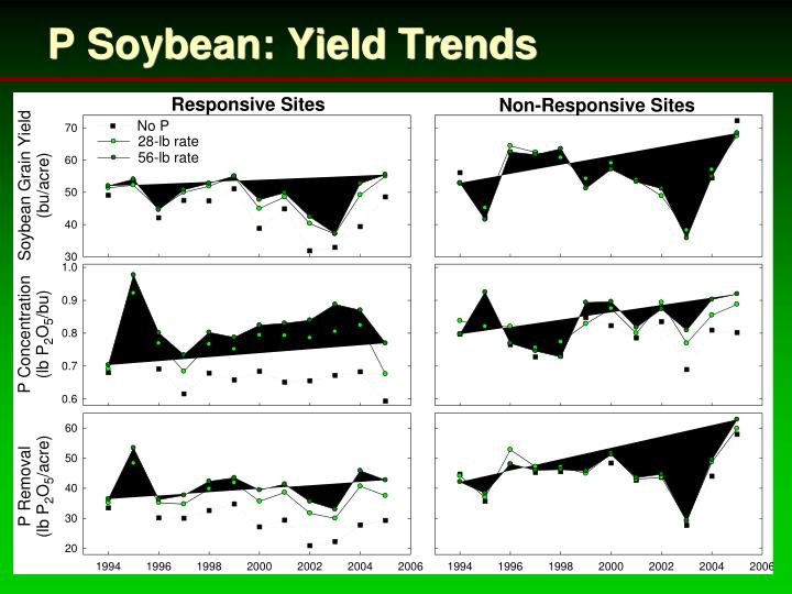 P Soybean: Yield Trends