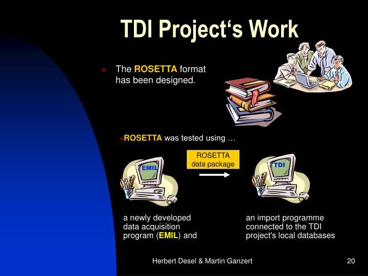 TDI Project's Work