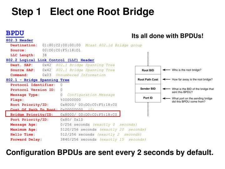 Step 1   Elect one Root Bridge