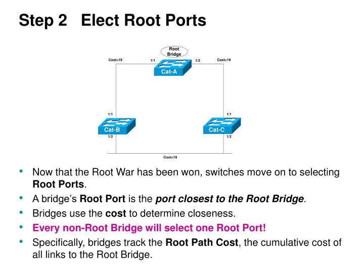 Step 2   Elect Root Ports
