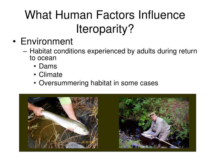 What Human Factors Influence Iteroparity?