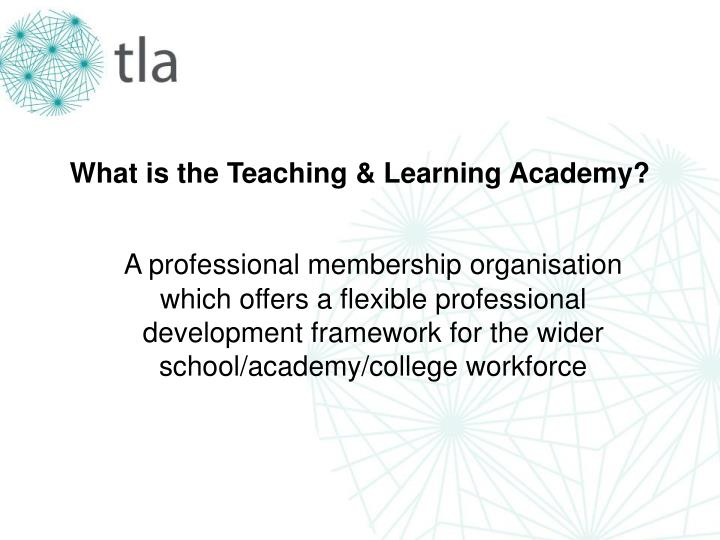 What is the Teaching & Learning Academy?