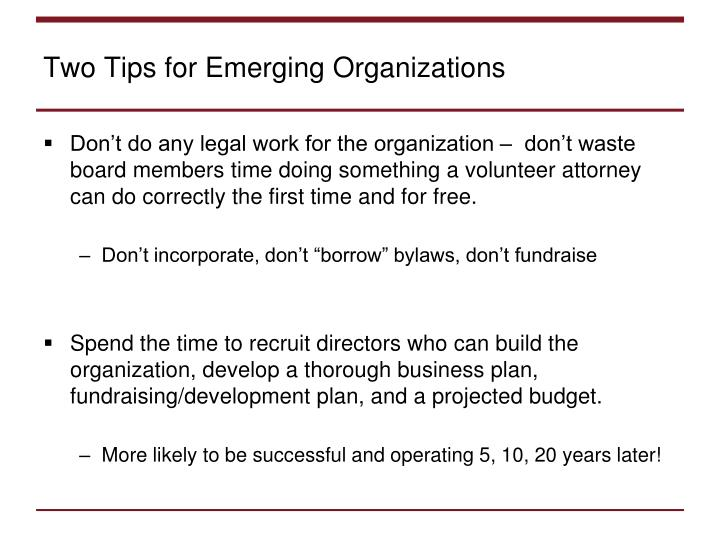 Two Tips for Emerging Organizations