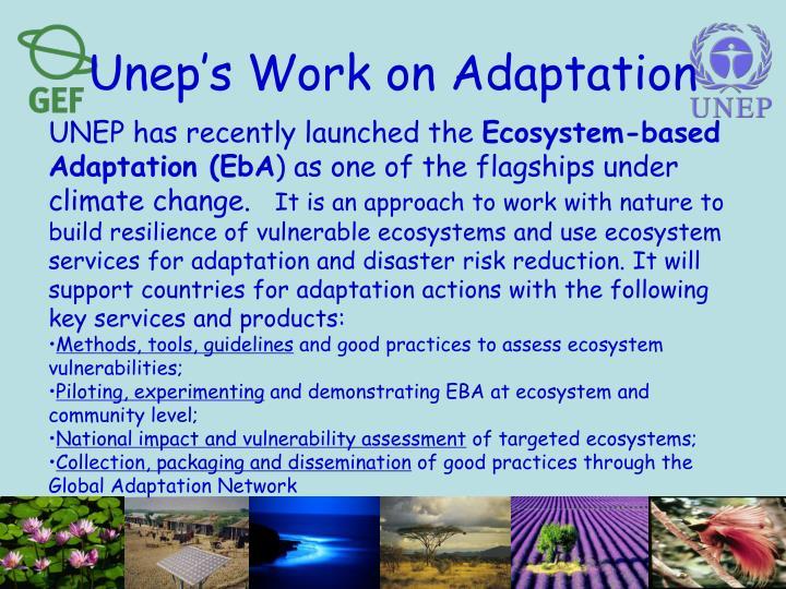 Unep's Work on Adaptation