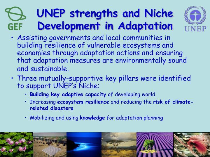UNEP strengths and Niche Development in Adaptation