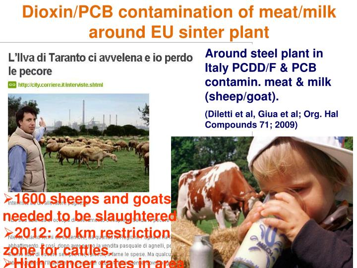Dioxin/PCB contamination of meat/milk