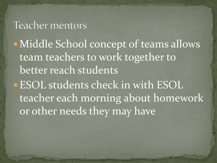 Teacher mentors