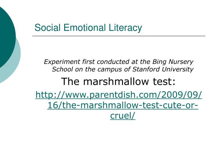 Social Emotional Literacy