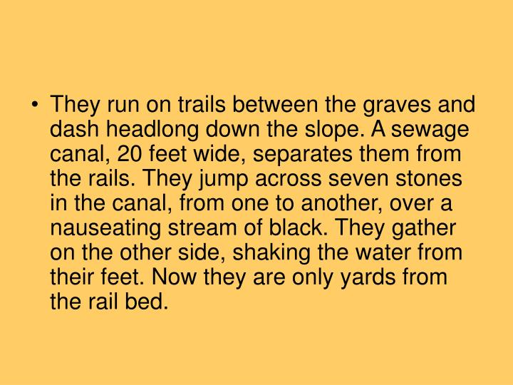 They run on trails between the graves and dash headlong down the slope. A sewage canal, 20 feet wide, separates them from the rails. They jump across seven stones in the canal, from one to another, over a nauseating stream of black. They gather on the other side, shaking the water from their feet. Now they are only yards from the rail bed.