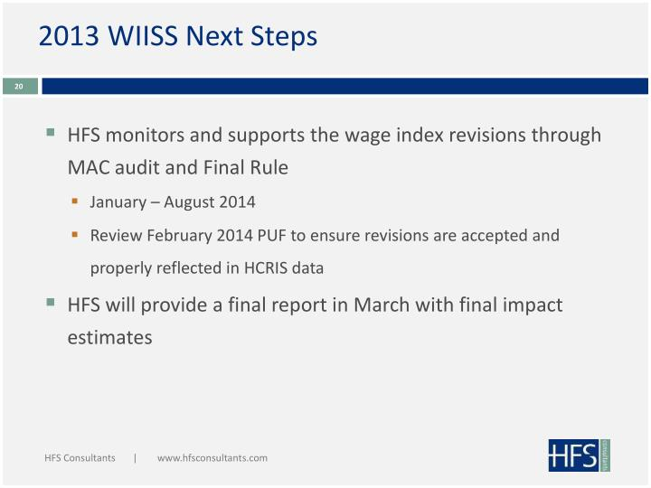 2013 WIISS Next Steps