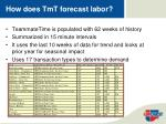 how does tmt forecast labor