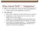 what about drift adaptation