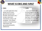 what is ebis and ivrs