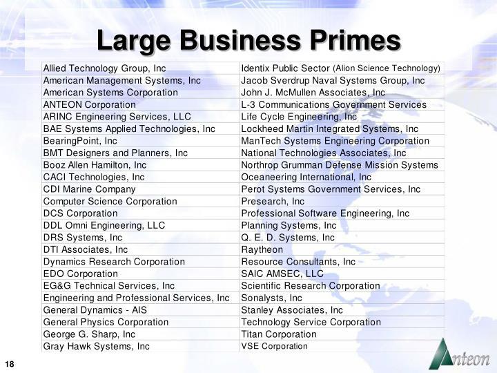 Large Business Primes