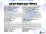 large business primes