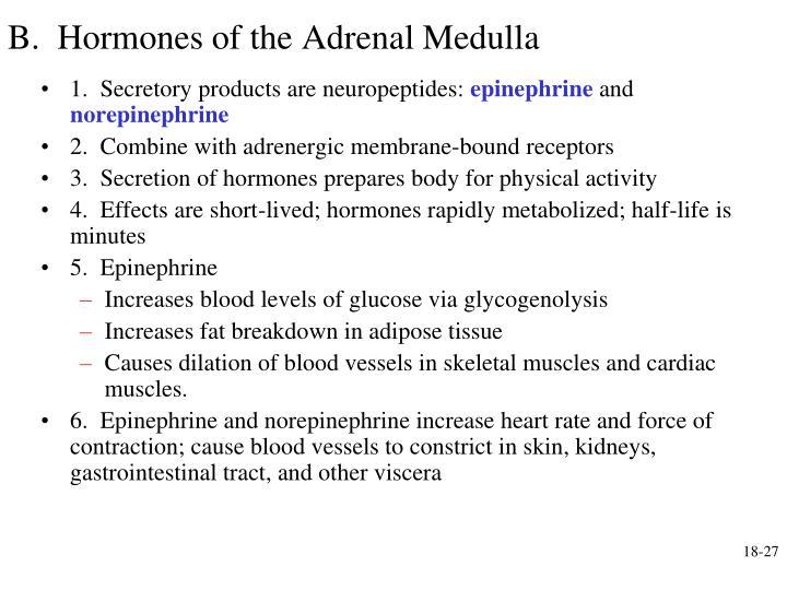 B.  Hormones of the Adrenal Medulla