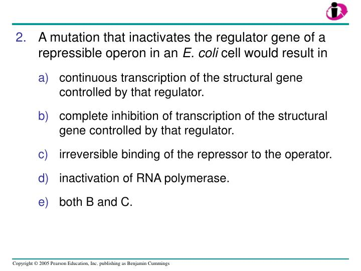 A mutation that inactivates the regulator gene of a repressible operon in an