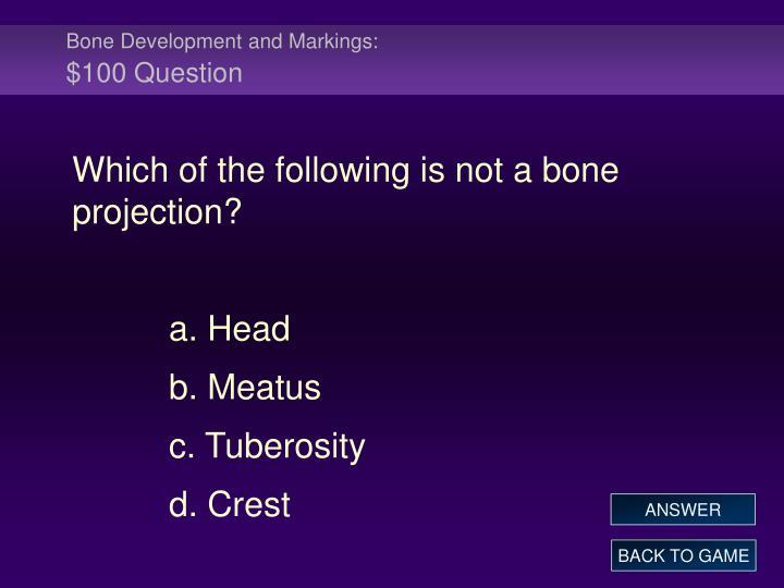 Bone Development and Markings: