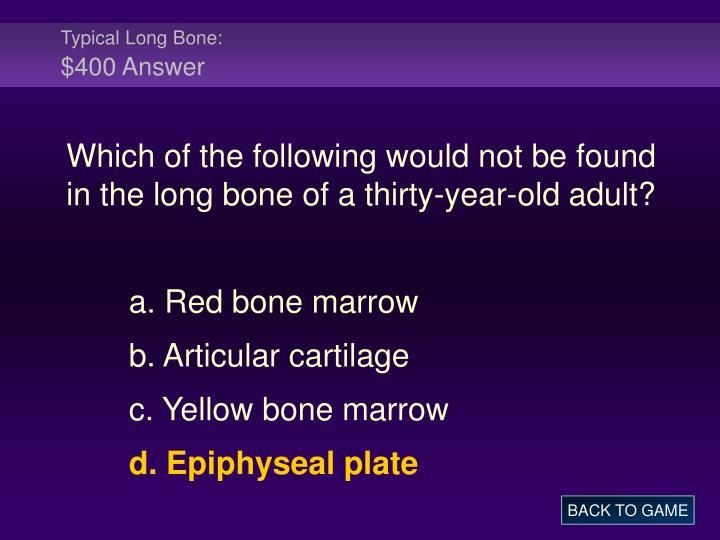 Typical Long Bone: