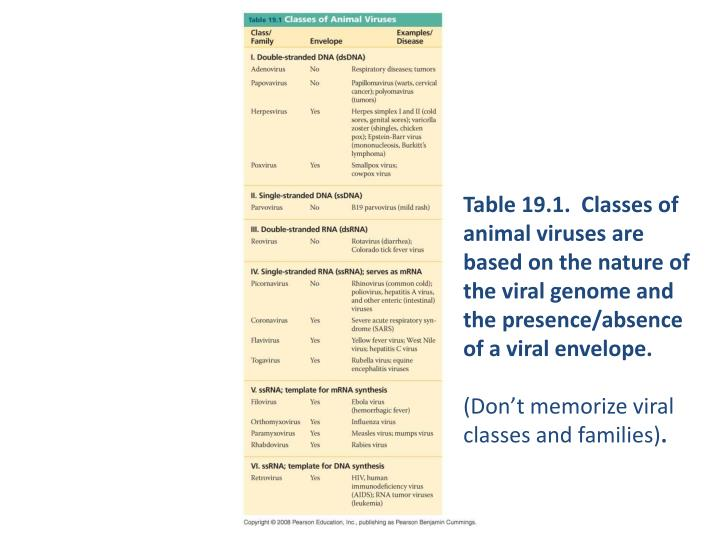 Table 19.1.  Classes of animal viruses are based on the nature of the viral genome and the presence/absence of a viral envelope.
