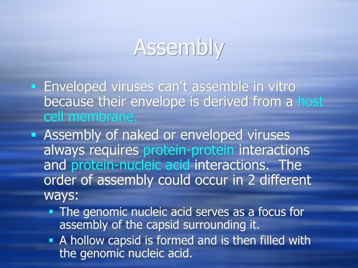 Assembly