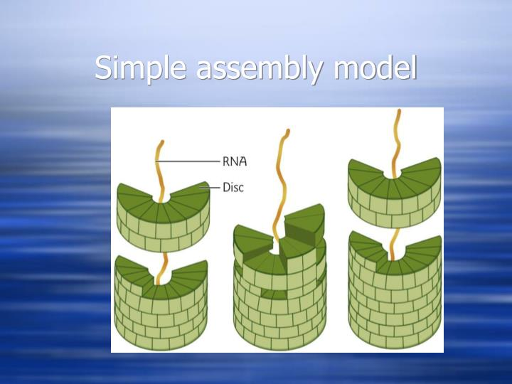 Simple assembly model