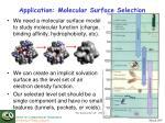 application molecular surface selection