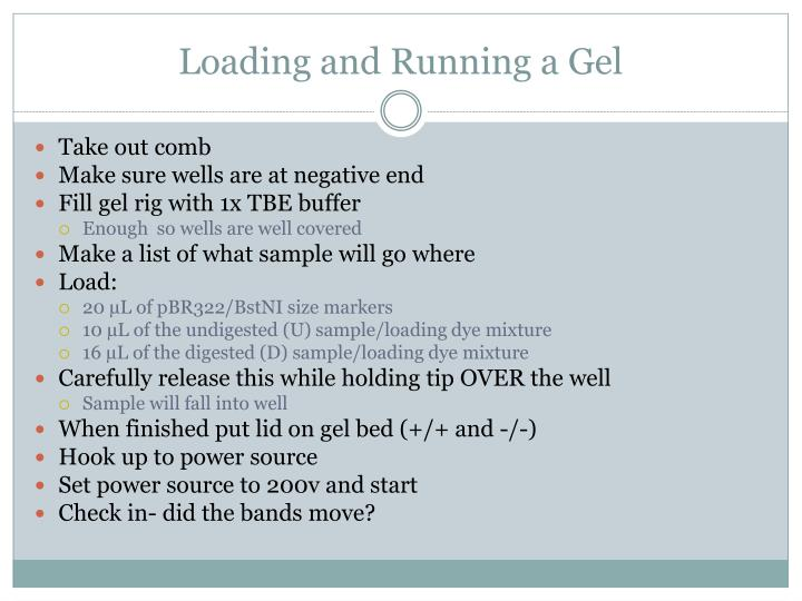 Loading and Running