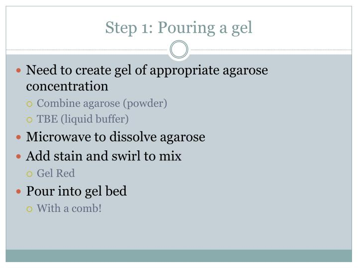 Step 1: Pouring a gel