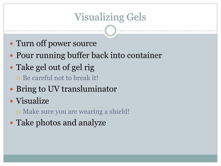 Visualizing Gels