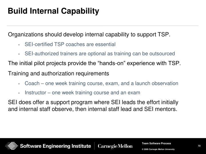 Build Internal Capability