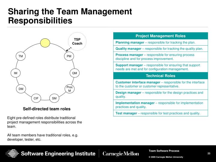 Sharing the Team Management Responsibilities