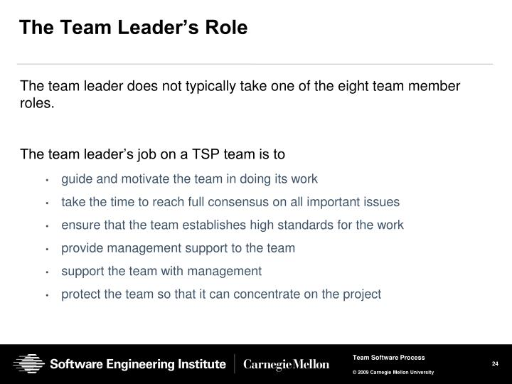 The Team Leader's Role