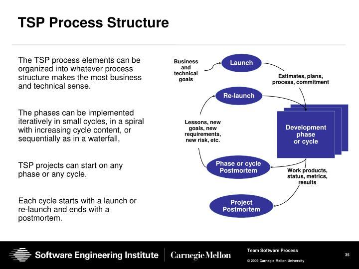 TSP Process Structure