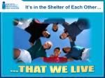 it s in the shelter of each other