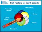 risk factors for youth suicide1