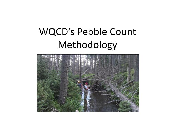 WQCD's Pebble Count