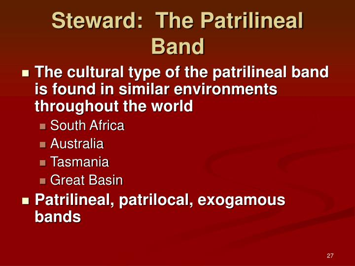 Steward:  The Patrilineal Band